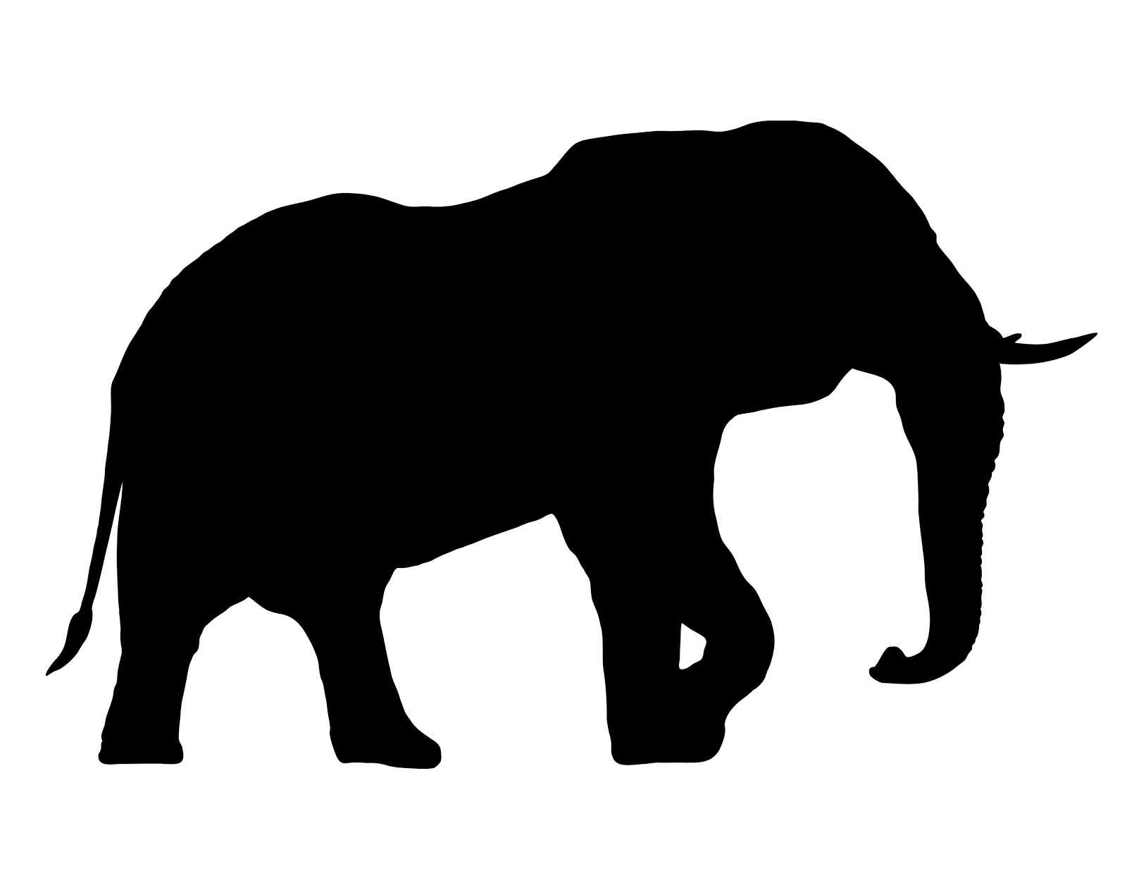 1600x1236 African Elephant Silhouette Trunk Up