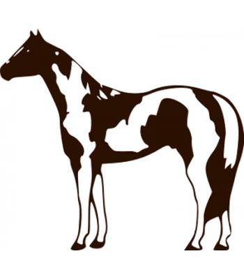 350x400 Horses