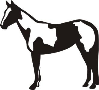 330x300 Paint Horse Vinyl Window Decal