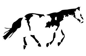 355x233 American Paint Horse Pony Window Decal Sticker Automotive