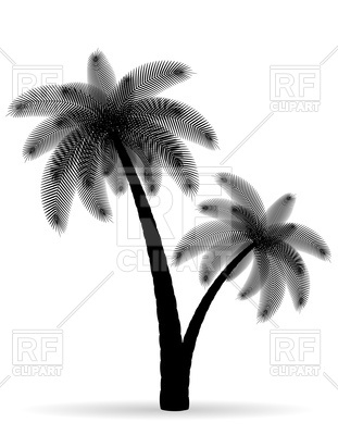 311x400 Palm Tree Black Silhouette Royalty Free Vector Clip Art Image