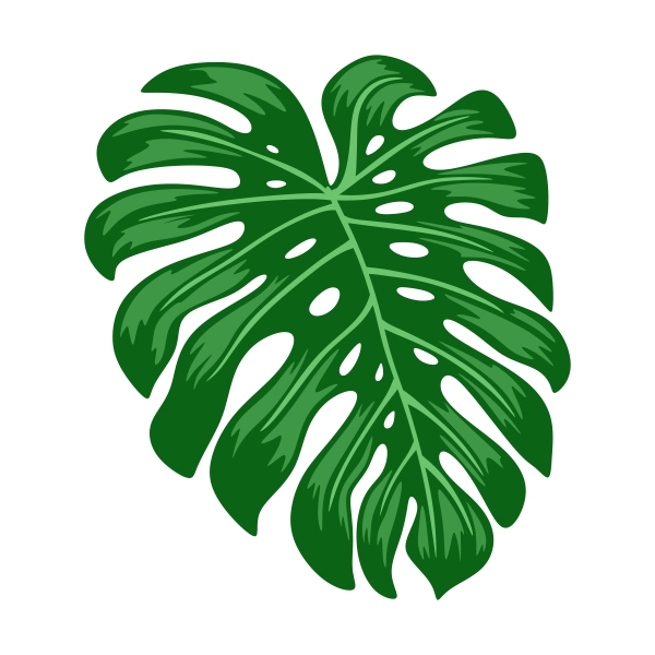 600x600 Tropical Palm Leaf Cuttable Design