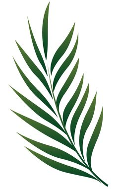 236x381 Palm Branch Image Free Cliparts That You Can Download To You