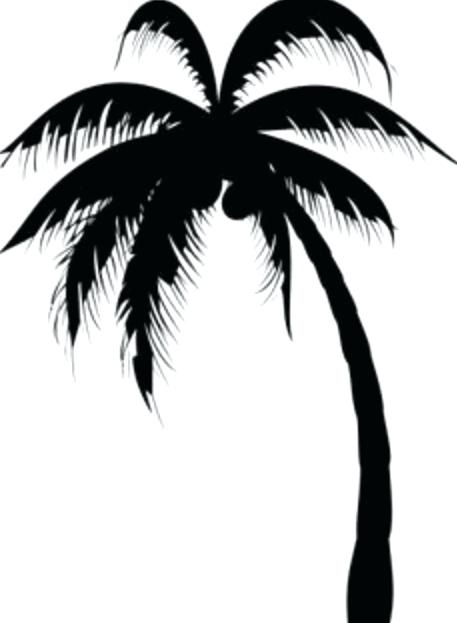 457x623 Palm Trees Drawings Awesome Black Silhouette Palm Tree Tattoo