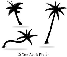 227x194 Set Of Palm Tree Leaves Silhouettes Isolated On White Vector
