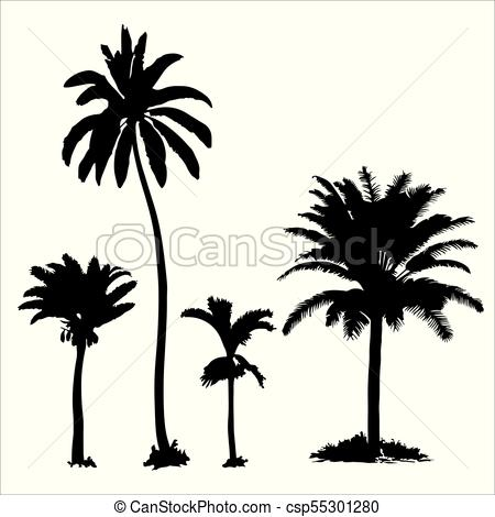 450x470 Set Of Tropical Palm Trees With Leaves, Black Silhouettes
