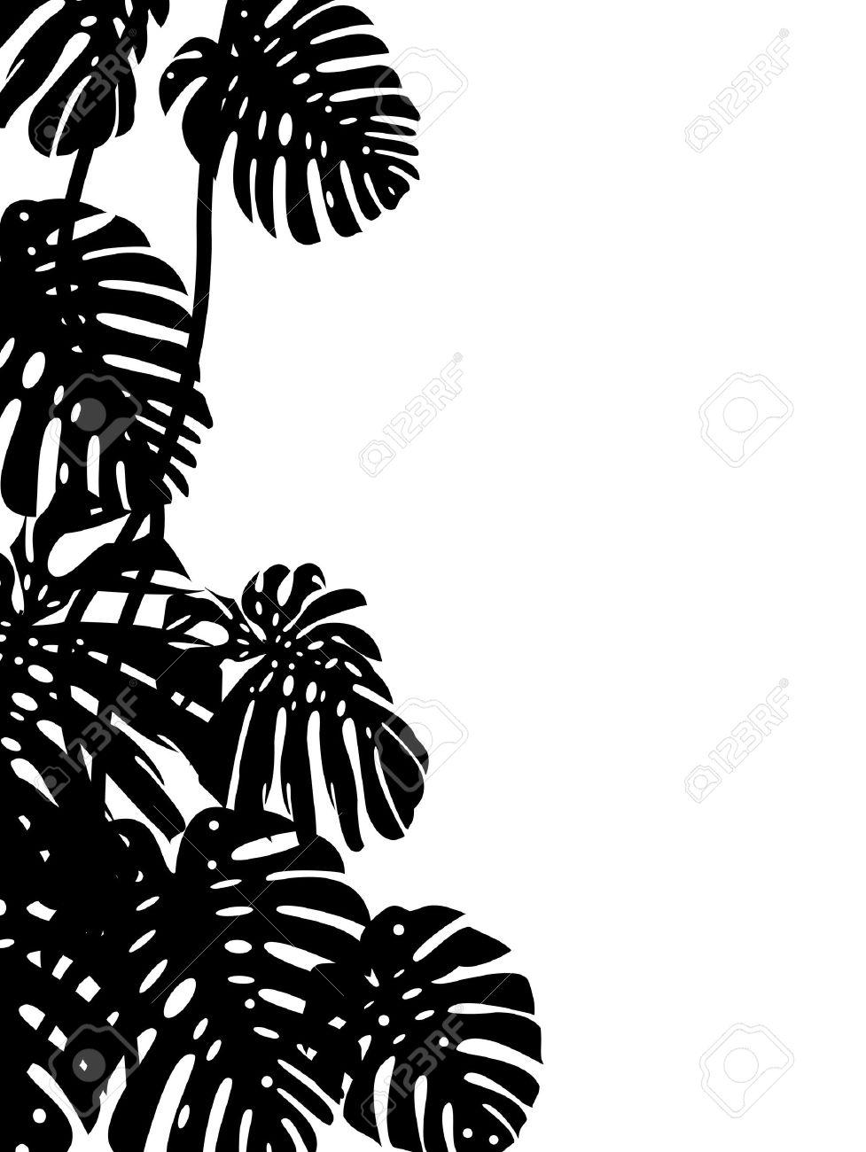 977x1300 Tropics Clipart Black And White 4013608