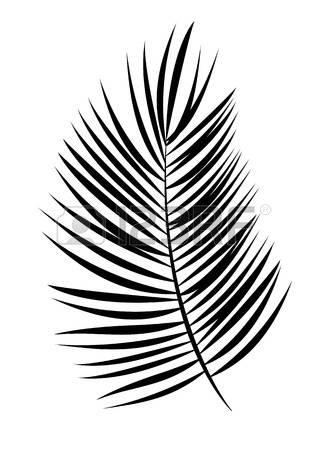 327x450 Coconut Leaf Clipart Amp Coconut Leaf Clip Art Images
