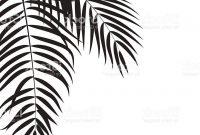 200x135 Hd Palm Tree Leaf Branch Vector Design