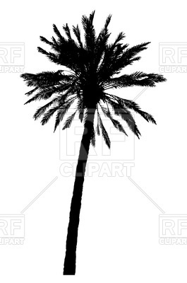 265x400 Silhouette Of Realistic Palm Tree Royalty Free Vector Clip Art