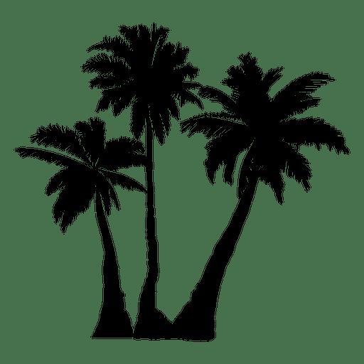 512x512 Arecaceae Silhouette Tree Clip Art