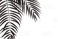 200x135 Hd Palm Tree Leaf Branch Vector Design