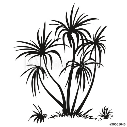 500x500 Palm Trees And Grass Silhouettes
