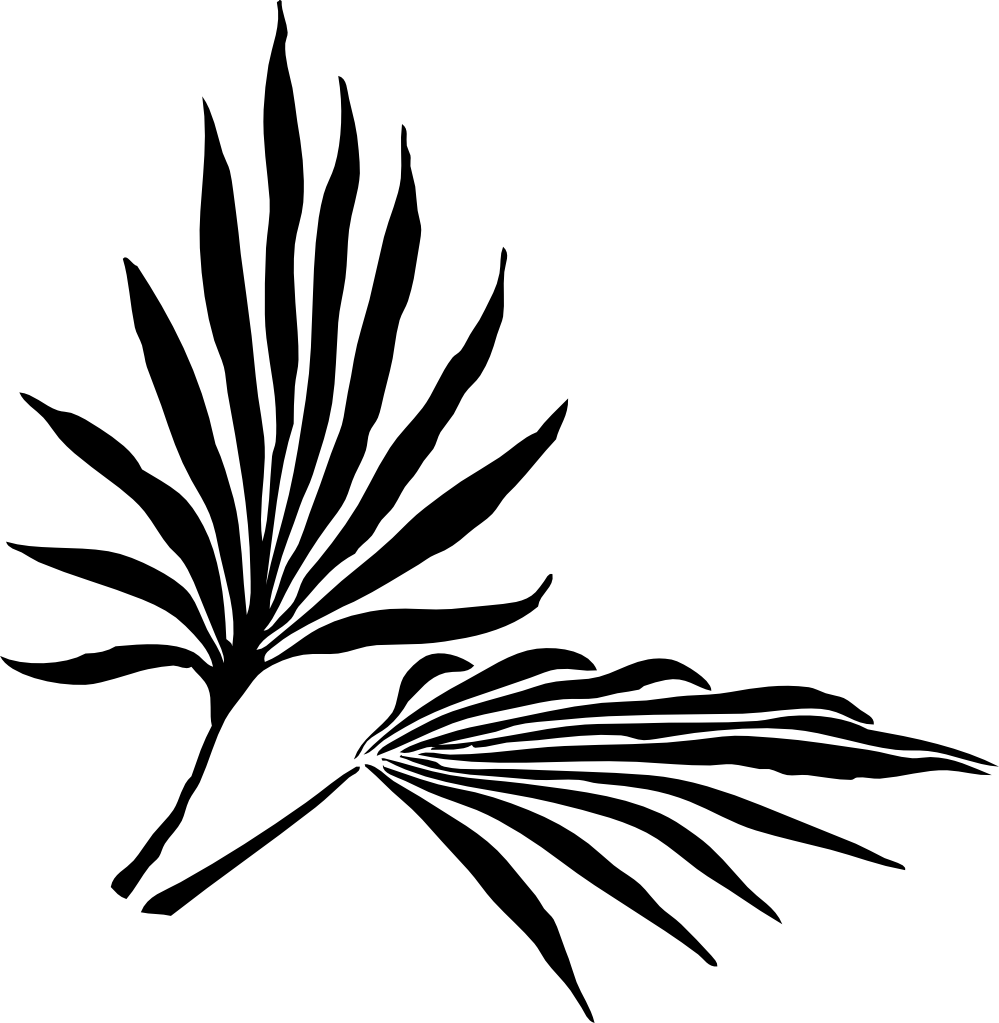 999x1023 Clip Art Fronds Silhouette Black White Line Art