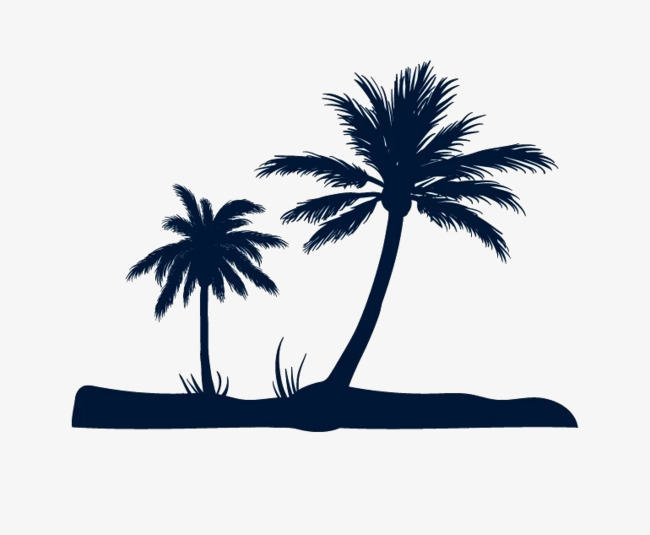 650x535 Coconut Tree Silhouette, Black, Coconut Tree, Beach Png Image