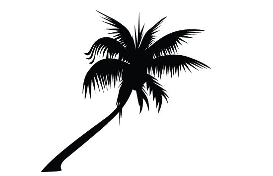550x354 Palm Tree Silhouette Vector Palm Tree Silhouette, Tree