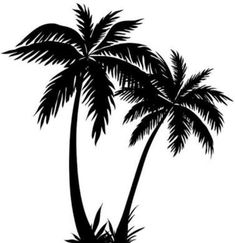 235x243 Palm Tree Silhouette Download Free Palm Tree Vectors Palm Tree