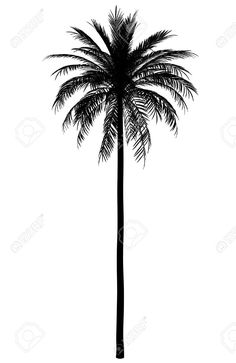 236x363 Palm Tree Silhouette Png Clip Art Image Tattoos