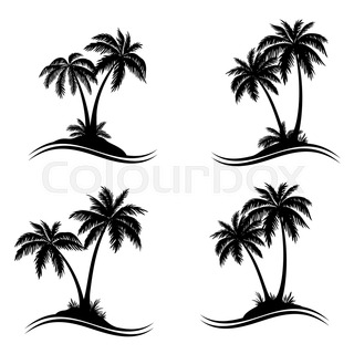 320x320 Palm Trees, Flowers And Grass, Silhouettes Stock Photo Colourbox
