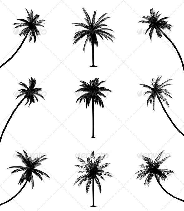 590x675 Palm Trees Palm, Tattoo Templates And Tattoo