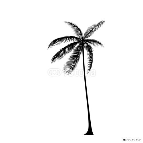 500x500 Vector Palm Tree Black Silhouette Isolated Over White