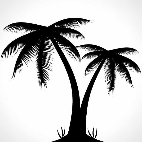 600x600 Palm Tree Silhouette, Vector Graphic
