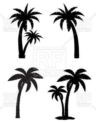 311x400 Palm Tropical Tree