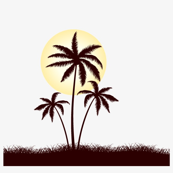 600x600 Coconut Tree Silhouette Background Decoration, Sunlight, Sunset