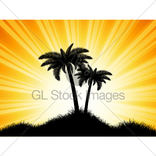 500x500 Palm Tree Silhouettes On Sunny Background Gl Stock Images