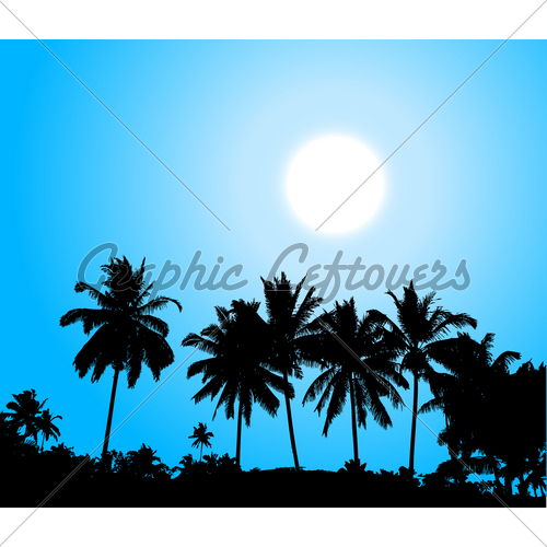500x500 Tropical Sunset, Palm Tree Silhouette Gl Stock Images