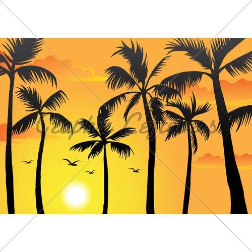 500x500 Beach Palm Trees Gl Stock Images