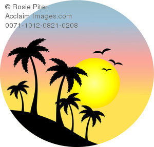 300x287 Image Silhouettes Palm Trees And Birds In Front