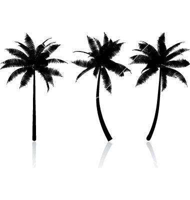 380x400 Palm Tree Graphics Vector Tatuaje Palm, Graphics