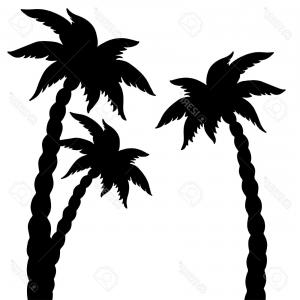 300x300 Tropical Palm Trees Black Silhouettes Outline Lazttweet