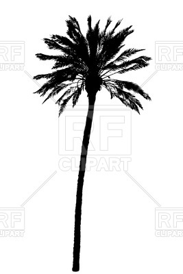 267x400 Palm Tree Silhouette Royalty Free Vector Clip Art Image