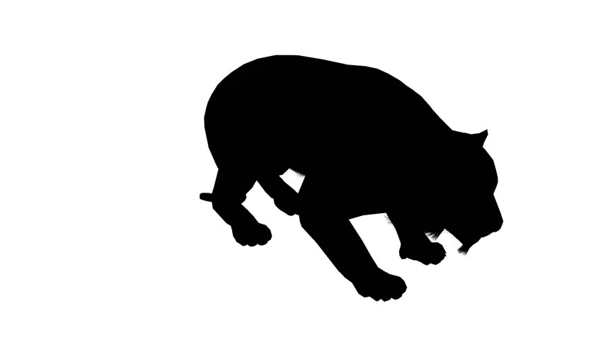 852x480 Tiger Jumped To Attack Prey Sketch Silhouette,wildlife Animals