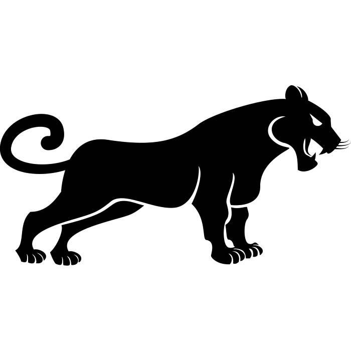 700x700 Black Panther