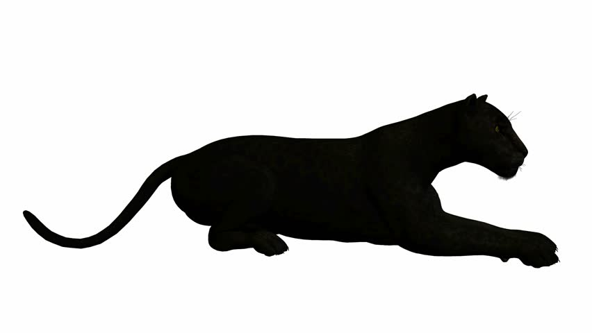 panther silhouette clip art at getdrawings com free for personal rh getdrawings com  free black panther clipart