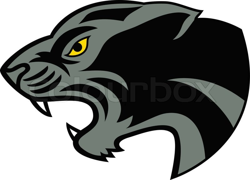 800x578 Panther Head Vector