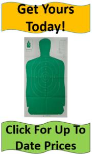 180x300 Best Recreational Shooting Targets Reviewed