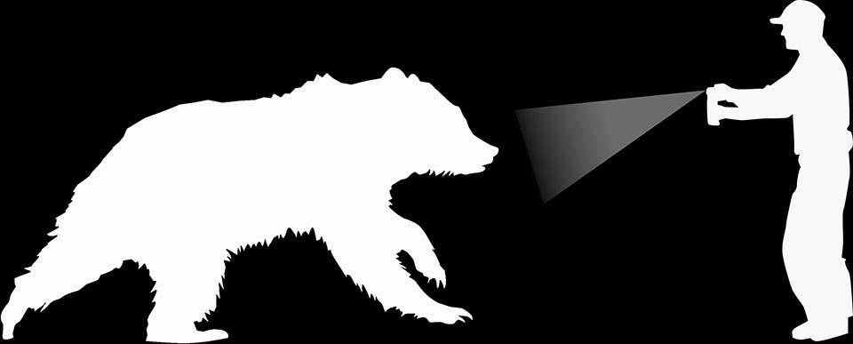 960x387 Staying Safe Around Bears