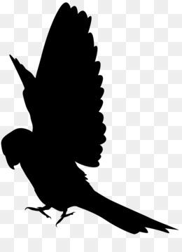 260x360 Free Download Parrot Silhouette Clip Art