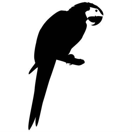 450x450 Image Result For Parrot Silhouette Desk Ideas