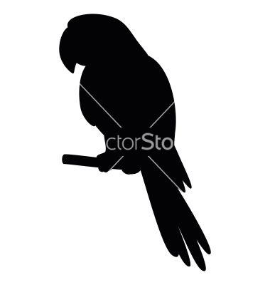 380x400 Parrot a pole silhouette vector 768226  +by+alexcoolok