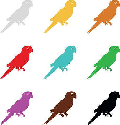407x423 Parrot Silhouette Premium Clipart