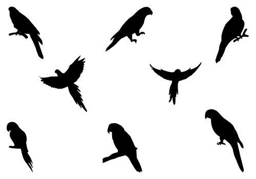 500x350 Birds Vector Graphicssilhouette Clip Art Silhuetas