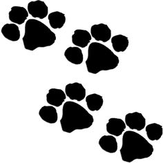 236x236 Try This Free Dog Bone And Paw Vector For Your Designs. Pawing Is