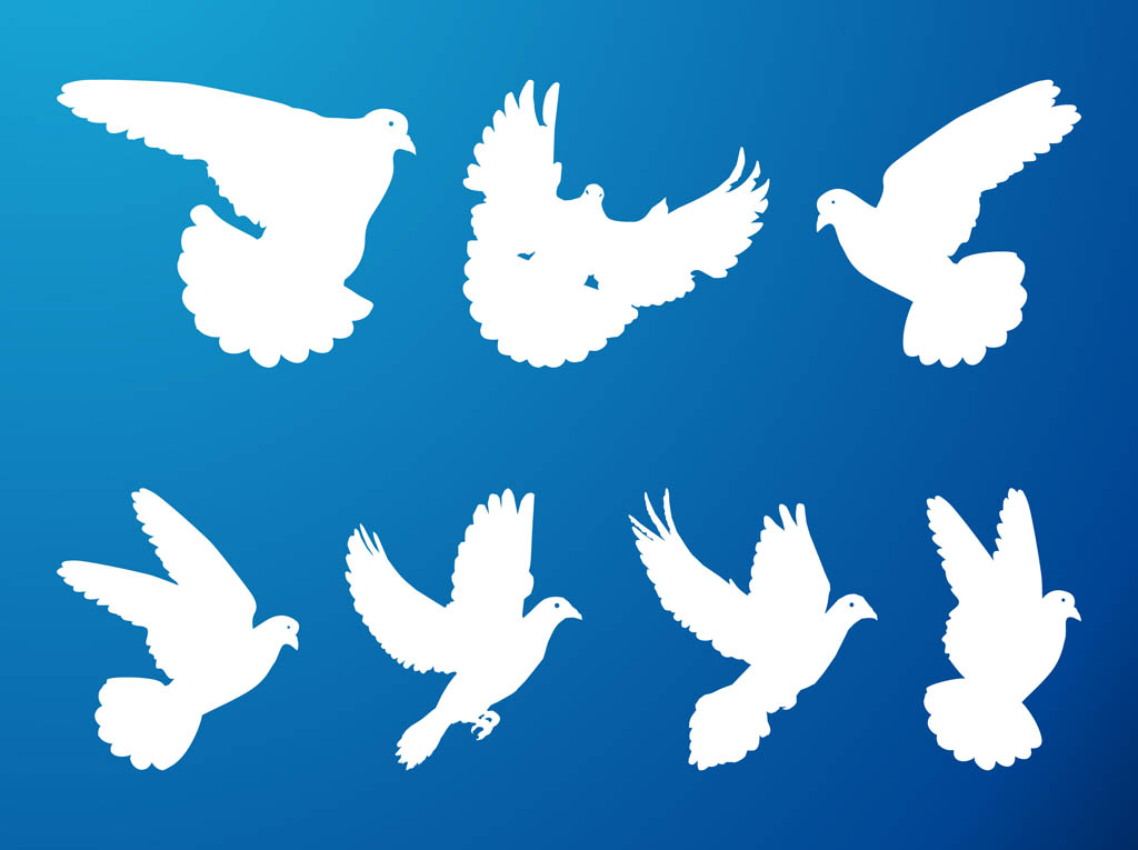 1024x765 Flying Pigeons Set Vector Art Amp Graphics