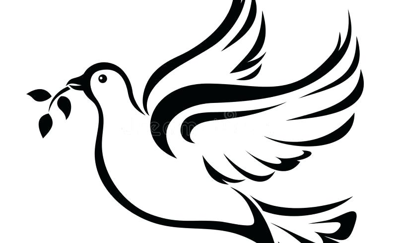 800x491 White Dove Outline Decal Sticker White Dove Outline Car Window