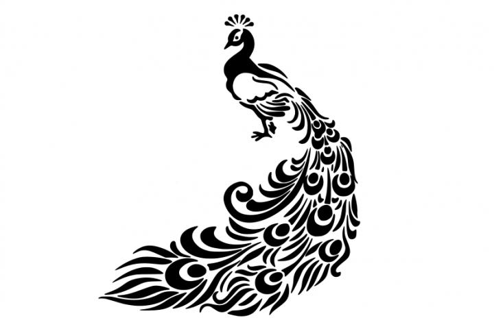 peacock silhouette clip art at getdrawings com free for personal rh getdrawings com  peacock feather images clip art